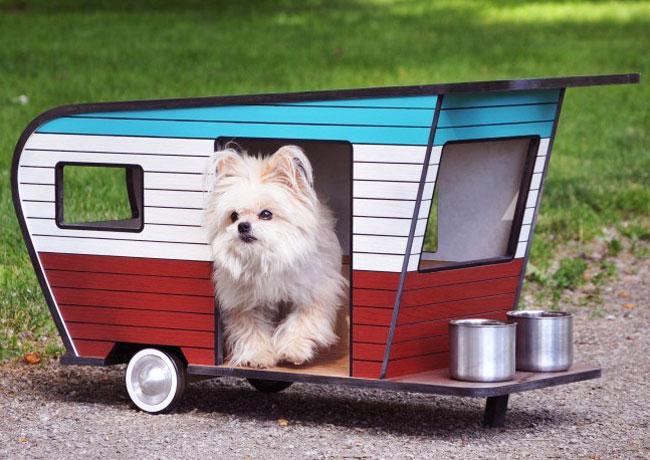 mini caravane de camping pour chien