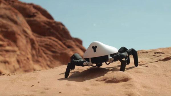 hexa spider dans le desert
