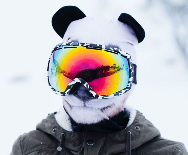 cagoule Panda avec maske de ski
